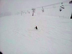 深い新雪を滑走する本多選手